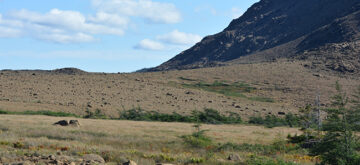 Sailing ever northward in search of wildlife, culture and history